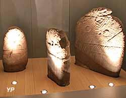 Statues-menhirs du Rouergue