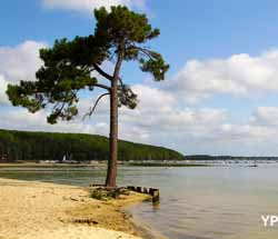 Camping le littoral hourtin guide campings - Carcans maubuisson office de tourisme ...