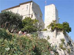 Château des Grimaldi