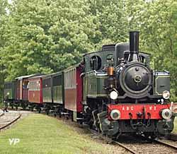 Train Thur Doller Alsace - la Mallet entre en gare de Burnhaupt