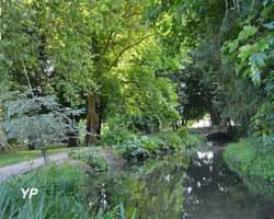Parc et jardins du château d'Acquigny - rénovation des berges avec des plantes dont les racines maintiennent la terre