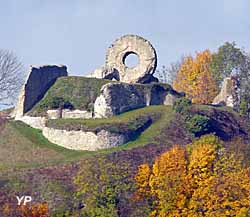 Château de l'Engelbourg (Ville de Thann)