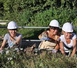 Château de l'Engelbourg - chantier de jeunes volontaires