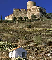 Fort Saint-Elme