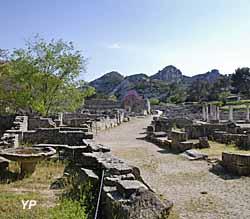 Site archéologique de Glanum - rue principale (Office de Tourisme Saint Rémy de Provence)