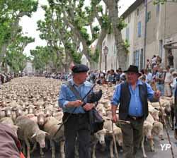 Bouches du rh ne informations touristiques d marches - Office du tourisme st remy de provence ...