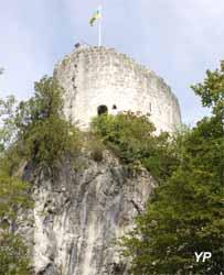 Tour des comtes de Genève