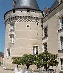 Château Musée, parc et jardins