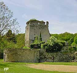 Château fort et motte castrale (C. Boulet)