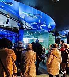 Mareis, centre de découverte de la pêche en mer (Maréis / G. Butruille)