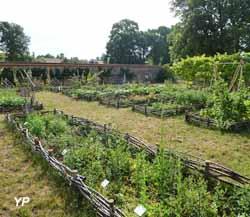 Jardin botanique universitaire mignaloux beauvoir for Jardin universitaire