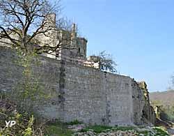 Château de Rochefort