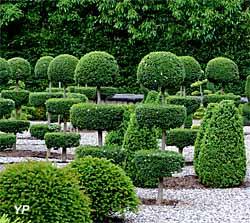 rencontre jardin et nature fontenay le comte Laval