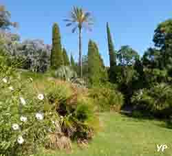 Domaine du Rayol - jardin d'Amérique subtropicale (Domaine du Rayol)