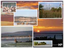 Camping gcu port leucate leucate guide campings - Office tourisme port leucate ...