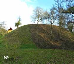 Tour de Vesvre - motte féodale de Vesvre (Xe siècle)