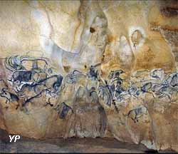 Caverne du Pont d'Arc - La grande fresque de la salle du fond