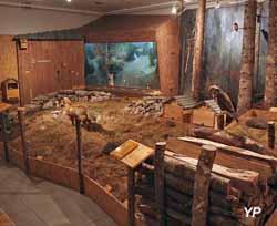 Maison de la réserve - une des 6 salles d'exposition (Maison de la réserve)