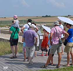 Musée et site gallo-roamins du Fâ - visites guidées