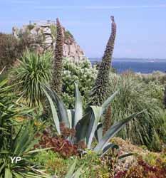 Jardin Exotique et Botanique de Roscoff