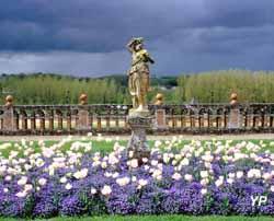 Château de Valmer - Bacchante, tulipes et myosotis