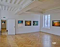 Galerie du Lion - Hôtel Croix de Malte