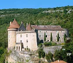 Château de Cabrerets (Château de Cabrerets)
