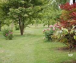 Arboretum Adeline - allée Augustine Henry