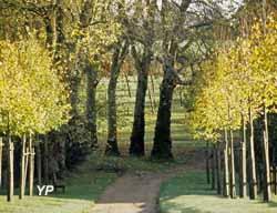 Manoir de Kernault - allée menant au parc