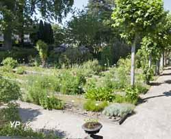 Jardin botanique de l 39 ufr sant d partement pharmacie angers - Pharmacie du jardin des plantes ...