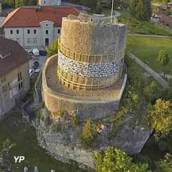 Tour des comtes de gen ve la roche sur foron journ es - La roche sur foron office du tourisme ...