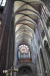 Cathédrale Notre-Dame de l'Assomption - nef