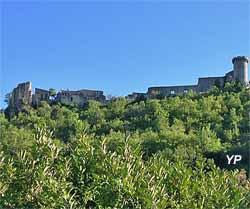 château de Viens
