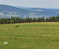 Plateau de Georgovie