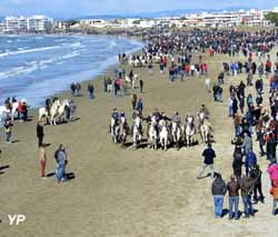 Abrivado de plages