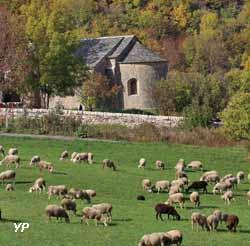 Ancienne Eglise Saint-Flour