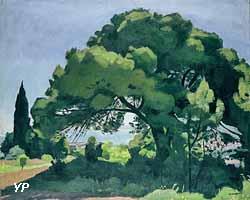 Pin à  Alger (Albert Marquet, 1912) - Exposition Le musée se met au vert ! (Musée des Beaux-Arts)