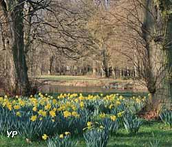 Jardin en avril