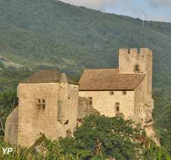 Château fort (Isabelle de Laroullière)
