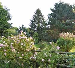 Au delà du roiser 'Bonica 92', vue sur l'arboretum en septembre