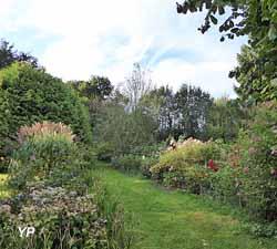 Massifs de roses dans l'arboretum en septembre