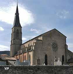 Église - cathédrale Saint-Sauveur (Mairie de Vabres l'Abbaye)