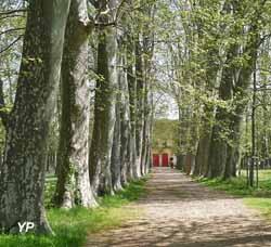 Château des évêques - parc
