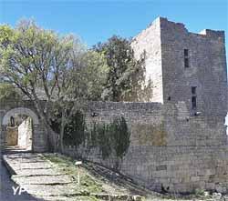 Château de Gicon (Association Les Amis de Gicon et du Patrimoine)
