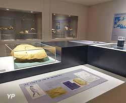 Musée de Paléontologie Humaine de Terra Amata (Ville de Nice)