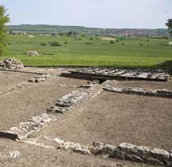 La Villa gallo-romaine de Dehlingen