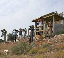 Camp de Migration du Fort de la Revère (Michel Belaud LPO PACA)