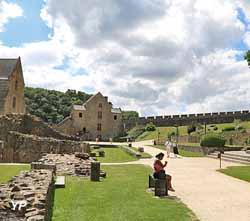 Château de Fougères - basse-cour, vestiges du logis, tour Raoul et tour Surienne