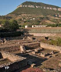 Site archéologique la Graufesenque (Service éducatif du Musée de Millau)
