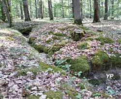 Site des Sablonnières
